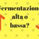 Birra ad alta e bassa fermentazione
